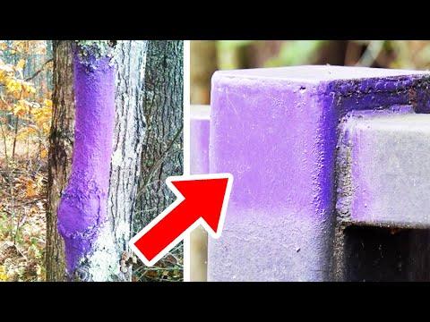 Pokud uvidíte strom nebo plot označený fialovou barvou, okamžitě vypadněte z místa...