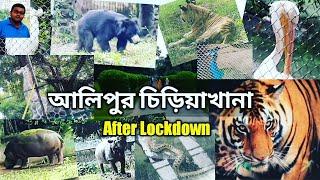 Kolkata alipur zoo after Lockdown|আলিপুর চিড়িয়াখানা|Alipur chiriakhana| pets & animals|Kolkata zoo