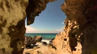 Paul Van Dyk Feat. Arty   The Ocean [ASOT 555]