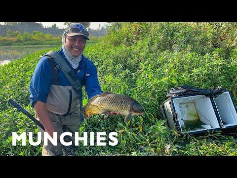 Karpefiskeri med flue i Los Angeles