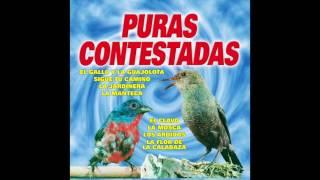 Halcones y Palomas - Puras Contestadas (Disco Completo)