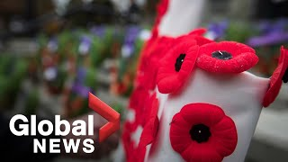 What do Remembrance Day poppy donations fund?