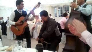 Manila Strings Wedding Bohemian Rhapsody
