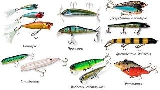 Все о приманках для рыбы