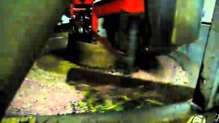preview picture of video 'Mola frantoio spremitura olio dalle olive'