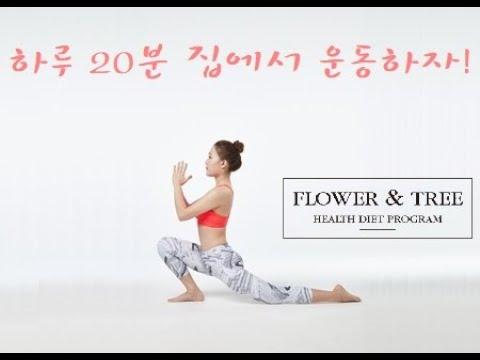 꽃과나무 운동영상