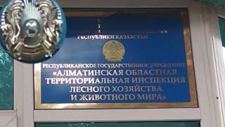 Закон о любительской рыбалке в казахстане 2020