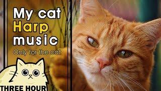 [MY CAT HARP MUSIC] 고양이 진정을 위한 부드러운 하프 소리, 고양이 자장가(Soft harp sounds for cat soothing,猫ハーフ音楽)