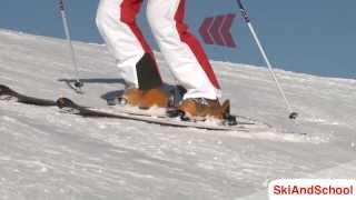 Смотреть онлайн Учимся скользить с горы на параллельных лыжах