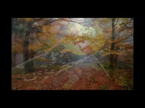 Janek Eret trio - Podzimní karneval - Janek Eret trio