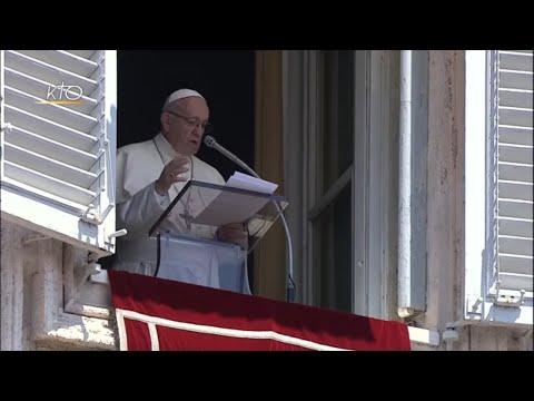 Jésus offre le pain et la parole : Angélus du 22 juillet 2018