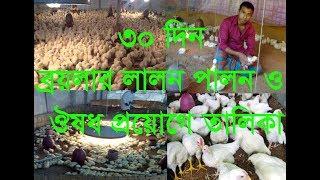 Broylar Lalaon Palon  Poultry Farming In Bangladesh