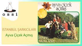 İstanbul Şarkıcıları / Ayva Çiçek Açmış