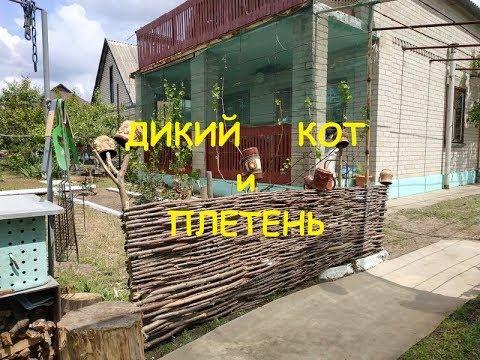 Как из ничего сделать забор. Плетём украинский тын (плетень).