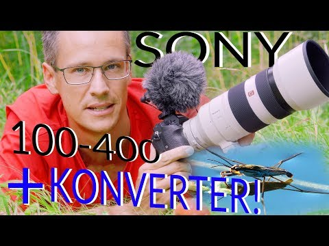 SONY 100-400mm GM + SEL14TC ✅ Konverter Fokus und Bildqualität   TEST