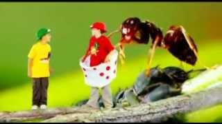Green Balloon Club - Minibeast madness song - Cbeebies