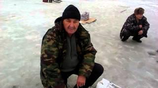 Усть каменогорск рыбалка в усть-каменогорске