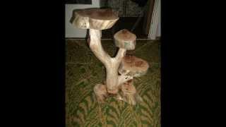 Лиепая Изделия из коряг  Liepaja Wooden products
