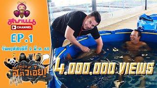ช็อคเบอร์แรง!!! ปลาคาร์ฟราคาหลักแสนของคุณสดมภ์-เพื่อนรักสัตว์เอ๊ย l EP.1 l 2 มี.ค.60