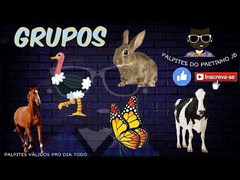JOGO DO BICHO DE HOJE 05/11/2020 PARA TODAS AS LOTERIAS
