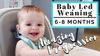 60 Days of Baby Led Weaning Progression | Starting Solid Foods | LINDSEYDELIGHT