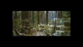 Белла и Эдвард, реклама рассвета часть 2