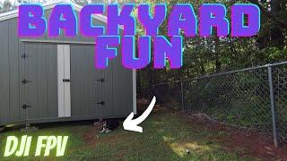 DJI FPV : Backyard Fun