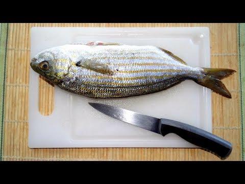 Pesca russa di 1 2 3 video