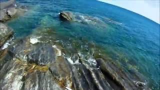На что клюет дорадо в средиземном море