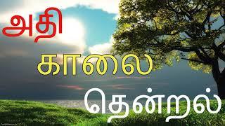 KAALAI NERA PAADALGAL /TAMIL CINEMA SONGS /TAMIL HITS /ILAYARAJA MORNING MELODY /GOOD MORNING SONGS