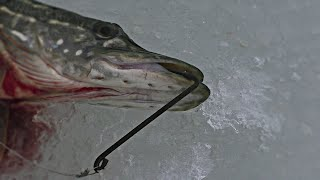 Снасть кобра на щуку подо льдом