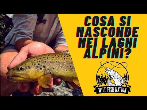 Comprare podsak per pescare in Mosca
