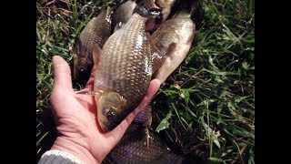 Кто завтра на рыбалку сергиев посад