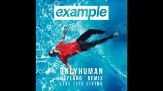 Example   Only Human Heyland remix