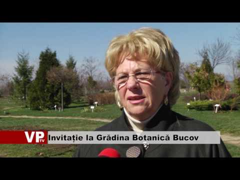 Invitație la Grădina Botanică Bucov