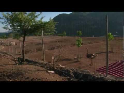 Αγροτουρισμός στην περιοχή της Γορτυνίας