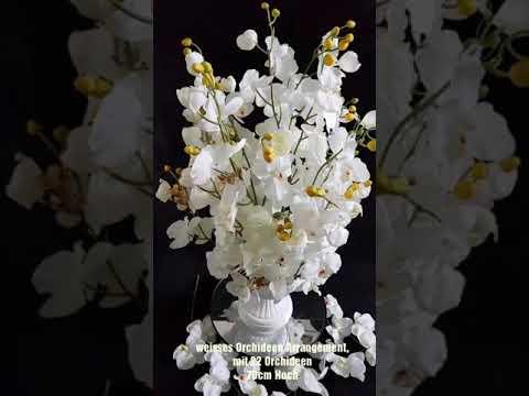 Title Weiße Orchideen