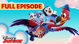 Youve Gotta Be Kitten Me 🐱 / Whale, Hello There 🐳 | Full Episode | T.O.T.S. | Disney Junior