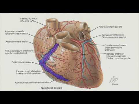 Étape 2 risque dhypertension 3 avec une maladie cardiaque