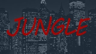 Jungle (Remix) - X Ambassadors