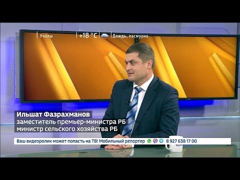 Какие современные технологии внедряют в аграрной отрасли Башкирии: интервью с заместителем Премьер-министра Правительства РБ — министром сельского хозяйства