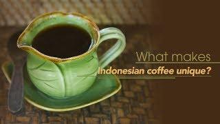 Live: What Makes Indonesian Coffee Unique? 印尼的咖啡有什么特别之处?