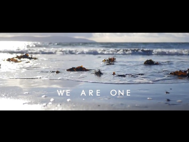 We Are One  - Chris Haze