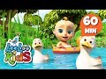 Download Video Five Little Ducks - Learn English with Songs for Children | LooLoo Kids