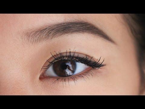 Natural Eyebrow Tutorial | ShifraSays
