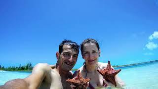 preview picture of video 'Danidefraga Snorkel Cayo Largo, CUBA'