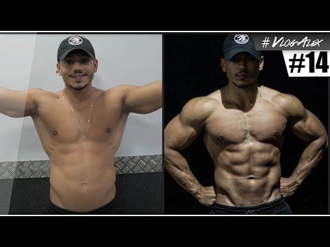La disposition du muscle profond du dos