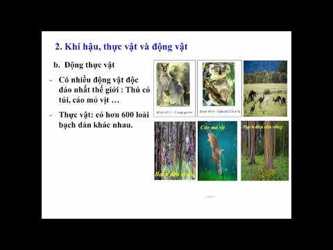 ĐỊA LÍ 7 - CHỦ ĐỀ: CHÂU ĐẠI DƯƠNG (BÀI 48 - 49)