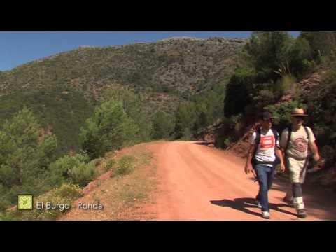 Grand Sentier de Málaga. Étape 23: El Burgo - Ronda ( français )