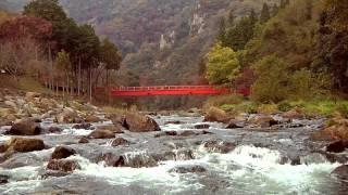 おかやまの紅葉「宇甘渓」